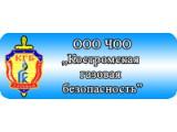 Логотип Костромская газовая безопасность