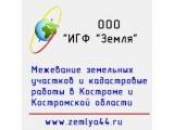 """Логотип ООО """"ИГФ """"Земля"""""""