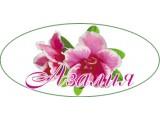 Логотип Азалия, ИП